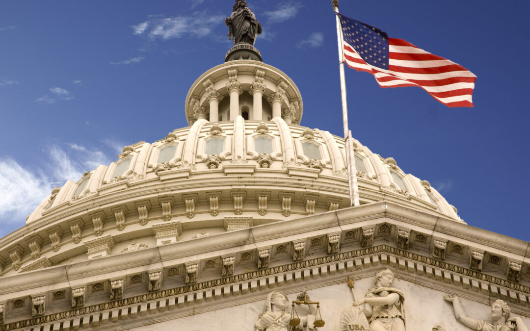 Congress on Standby to Override Possible NDAA Veto