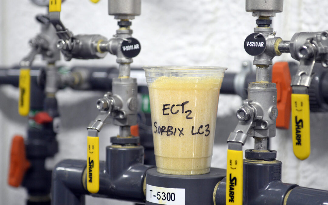 PFAS Cleanup Will Take Decades, DOD Official Tells Congress